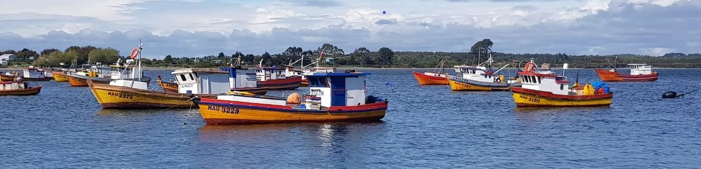Pesca aRtesanal PW